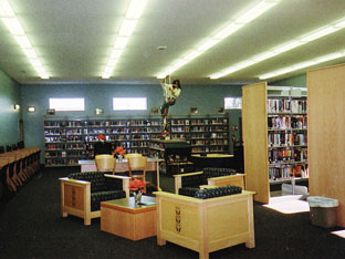 librarypic2